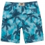 Coconut Tree Pattern Shorts