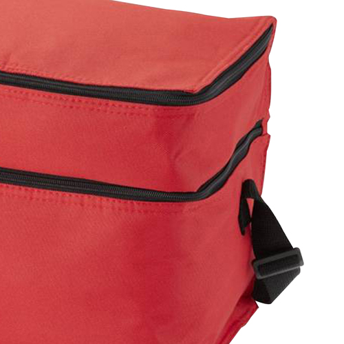 Double Compartment Lunch Cooler Bag