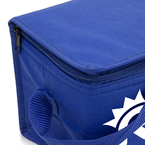 Insulated Collapsible Cooler Bag