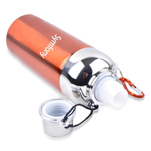 Double Insulated Stainless Steel Bottle Image 4