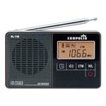 DSP PL-118 FM Radio With Clock Alarm