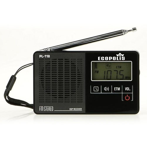 DSP PL-118 FM Radio With Clock Alarm Image 3